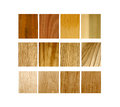 Variety of wood samples Royalty Free Stock Photo
