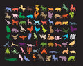 Various animals on black poster. Royalty Free Stock Images