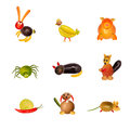 Various animals from fruit and vegetables Stock Photo