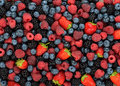 Various berries background of different and fruits Royalty Free Stock Image