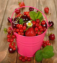 Various berries in a bucket on brown background Stock Photo