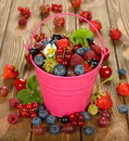 Various berries in a bucket on brown background Stock Images