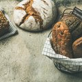 Various bread loaves on grey concrete background, square crop Royalty Free Stock Photo
