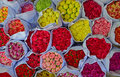 Various colour of carnation flowers in bulk at Flower Market