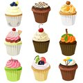 Various cupcake set with different topping
