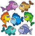 Various cute fishes collection Stock Photos