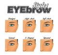 Various eyebrow shapes make-up chart
