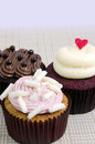 Various fancy cupcakes three with different toppings Stock Image