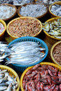 Various fish selling in market kinds of shown as different and business dealing Royalty Free Stock Photo