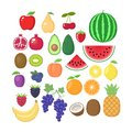 Various fruit collection. Vector fruits cartoons set. Fruit clipart. Royalty Free Stock Photo