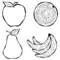 Various Fruit Line Art Royalty Free Stock Photography