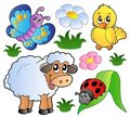 Various happy spring animals Stock Images