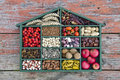 Various  healthy fruits, seeds and dried food ingredient  in wooden box Royalty Free Stock Photo