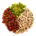Various legumes Royalty Free Stock Photos