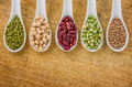 Various legumes on spoons porcelain Royalty Free Stock Images