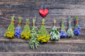 Various medical herbs on old wooden farm wall beautiful fresh bunch and red heart symbol Royalty Free Stock Photography