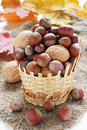 Various nuts basket Royalty Free Stock Photos