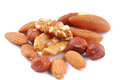 Various Nuts Isolated