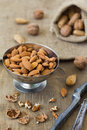 Various nuts selection of walnut and almond Royalty Free Stock Photos