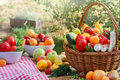 Various organic fruits and vegetables table full of Stock Images