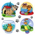 Various pets images 1 Royalty Free Stock Images