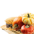 Various pumpkins and straw hat in harvest setting Royalty Free Stock Photo