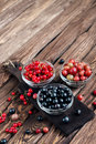 Various seasonal berries Royalty Free Stock Photo