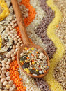 Various seeds and grains Royalty Free Stock Photo