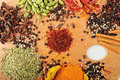 Various Spices Stock Images