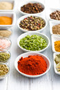 Various spices and herbs. Stock Photography