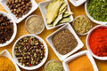 Various spices and herbs. Royalty Free Stock Photography