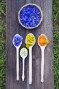 Various summer medical herbs in wooden spoons and plate healthy life concept Royalty Free Stock Photos