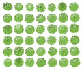 Various trees, bushes and shrubs, top view for landscape design plan. Vector illustration, isolated on white background. Royalty Free Stock Photo