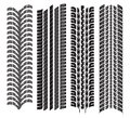 Various tyre treads vector illustration of the Stock Photo