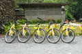 Various yellow bikes in a row pic of Stock Photography