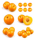 Various yellow plums groups Stock Photos