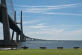 Vasco da Gama bridge in Lisbon, Postugal Royalty Free Stock Photo