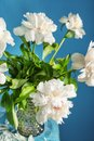 Vase with beautiful peony flowers on table against color background Royalty Free Stock Photo