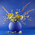 Vase with bouquet Royalty Free Stock Photo