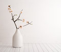 Vase with cherry blossom Royalty Free Stock Photo