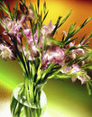 Vase of flowers a freshly cut gladioli an old world plant the iris family with sword shaped leaves and spikes brightly Royalty Free Stock Photo