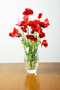 Vase with poppies on a wooden table Stock Photos