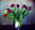 Vase with purple tulips bouquet of puple on a grunge background Stock Images