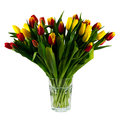 Vase with tulips isolated on a white background bouquet of in colorful lush green yellow orange Stock Images