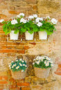 Vases and baskets of white flowers hung on a wall in monteriggioni tuscany italy Stock Photos