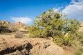 Vasquez Rocks State Park Calif...