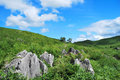 Vast karst plateau Royalty Free Stock Photography