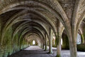 Vaulting in old cellar medieval showing stone supports and arched Royalty Free Stock Images