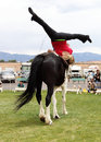 Vaulting performance young woman performs routine on horseback at the rio grande valley celtic festival in albuquerque new mexico Royalty Free Stock Photo