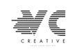 VC V C Zebra Letter Logo Design with Black and White Stripes Royalty Free Stock Photo